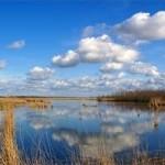 lauwersmeer4